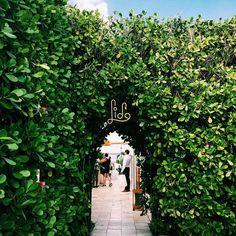 The Lido Restaurant, Standard Hotel, Miami Beach