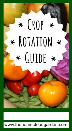 Crop Rotation Guide...WHO CAN'T BENEFIT FROM A CHANGE OF SCENERY NOW AND THEN?...THIS ALSO HOLDS TRUE FOR YOUR CROPS...WILL INCREASE QUANTITY/QUALITY OF YOUR PRODUCE...DON'T WORRY...THIS IS ACTUALLY A SIMPLE CONCEPT WITH SPECIFIC TRIED/TRUE FORMULAS THAT YOU CAN FOLLOW.
