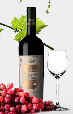 Vinho Quinta da Bacalhõa. Azeitão, Portugal