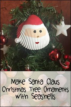 Add new and unique Christmas tree ornaments by making seashell Santa decorations! Learn more here...