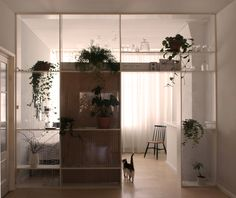 ARI - Xtra room, a wall to create an axtra space