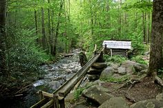 Places to Visit in Downtown Gatlinburg, Tennessee Gatlinburg Weddings, Us Travel, Travel Plan, Travel Ideas, Gatlinburg Tennessee, Fairy Tales, Scenery, Places To Visit, To Go