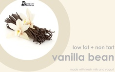 Vanilla Bean yoforia yogurt