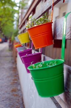 33 More Beautiful Container Gardening Ideas - A lovely container garden is one of the easiest ways to add beautifulflowers and plants to any size backyard, patio or porch space. There are many ways to leverage your available space and make your …