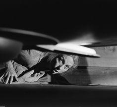 The Twilight Zone TV Show Photo 73 | eBay