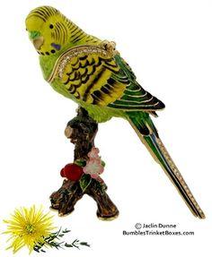 Trinket Box: Parakeet