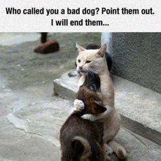 Jure moi que tu ne me quitteras pas !!!