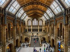 Science and nature lovers often make this destination their first stop in London. Between dinosaur bones, the model planets, the David Attenborough-narrated video about the Great Barrier Reef, and the stunning architecture, it's not hard to see why.