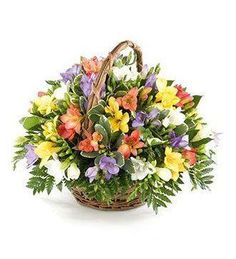 Fragrant Freesia Basket Arrangement, consisting of many different colours of freesias all arranged beautifully in a basket. Freesia basket arrangement brought to you by Edinburgh florist flowersbuydelivery. Basket Flower Arrangements, Beautiful Flower Arrangements, Silk Flowers, Floral Arrangements, Beautiful Flowers, Rainbow Party Decorations, Sympathy Flowers, Flower Boxes, Artificial Flowers