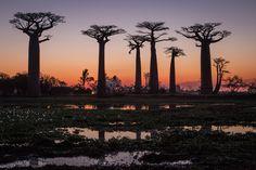 Landscape - Other Madagascar, Wildlife Nature, Ethiopia, Africa, Celestial, Sunset, Landscapes, Photography, Travel