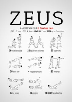 DareBee Workouts │ Zeus Workout - Full Body Strength Toning with focus on Shoulders, Triceps, Chest, Core, Butt, & Thighs