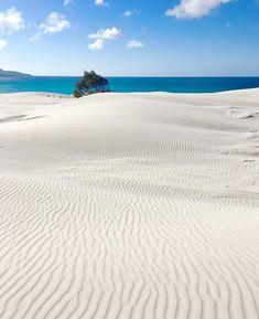 @filila78  #Teulada ⠀ Il comune di Teulada si trova a cavallo tra la costa del sud del Sulcis-Iglesiente e le montagne del Sulcis[2]. La costa frastagliata alterna promontori rocciosi che si tuffano a strapiombo sul mare ad insenature dove si trovano calette con sabbia bianchissima e acque cristalline. Di notevole interesse paesaggistico e naturalistico lo stagno di Malfatano, il capo Malfatano e il capo Teulada, la punta estrema sud della Sardegna. All'interno delle acque del comune vi son