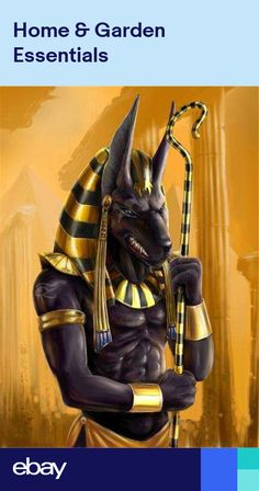 Anubis by airaf. Anubis was the god of embalming and the dead. Since jackals were often seen in cemeteries, the ancient Egyptians believed that Anubis watched over the dead. Egyptian Mythology, Egyptian Goddess, Anubis Tattoo, Egypt Art, Gods And Goddesses, Ancient Civilizations, Mythical Creatures, Ancient Egypt, Deities