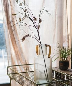 """Artificial Dried Ling Yu Grass Stem 47"""" Tall – RusticReach Yellow Plants, Plant Stem, Artificial Plants, Color Mixing, Greenery, Grass, Glass Vase, Rustic, Modern"""