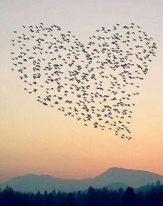 #Küt #küt #atıyor #kalbim..... #liseli #kızlar #gibi #pırpır, #uykusuz #gecelere #talim...♥
