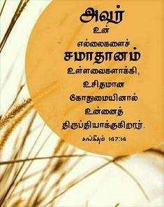 Tamil Bible Words, Jesus Photo, Bible Verse Wallpaper, Bible Verses, Wallpapers, Wallpaper, Scripture Verses, Bible Scripture Quotes, Bible Scriptures