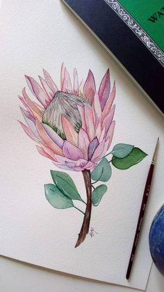 Protea flower original watercolor painting Pink flower | Etsy Protea Art, Protea Flower, Watercolor Flowers, Watercolor Paintings, Pastel Paintings, Watercolours, Botanical Wall Art, Flower Aesthetic, Fabric Painting