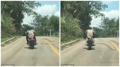Man attacked by flying snake while enjoying his motorbike ride (photo)