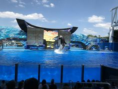 See World 🐳 See World, Marina Bay Sands, Orlando, Building, Disney, Travel, Places, Orlando Florida, Viajes