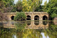 Lodi Gardens/ Delhi