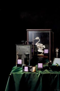 Dutch Still Life-Inspired Perfume Photographs by Roberto Greco