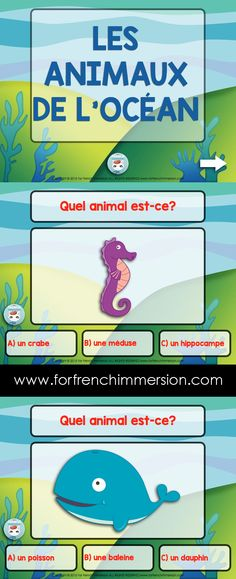 French Sea Animals Vocabulary Quiz on Slideshare - to be used in the French classroom. Les animaux d French Teacher, Teaching French, Primary Teaching, Teaching Kindergarten, Interactive Activities, Science Activities, French For Beginners, Learning A Second Language, French Summer