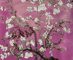 Van Gogh- Branches of an Almond Tree in Blossom - Magenta - Canvas Art & Reproduction Oil Paintings Colorful Paintings, Beautiful Paintings, Oil Painting On Canvas, Canvas Art, Oil Paintings, Van Gogh Almond Blossom, Oil Painting Reproductions, Famous Art, Pink Peonies