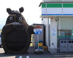OMG  This was my childhood dream! To be with a Toroto !  Kagoshima, Japan