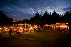 Amphitheatre of the Redwoods | Wedding and Events Venue | Santa Cruz, CA | Forest Wedding