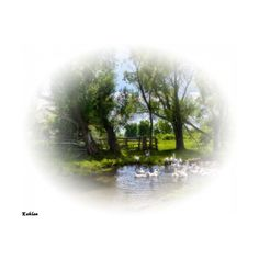 Blog de l'ile de kahlan - ❤ liked on Polyvore featuring tubes, gardens, paysage, trees and art
