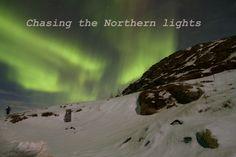 Northernlighs chase, Tromsø, Norway #travel