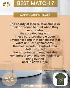 Capricorn And Pisces Compatibility, Pisces Traits, Aries And Aquarius, Capricorn Love, Capricorn Facts, Pisces Quotes, Signs Compatibility, Aquarius Relationship, Capricorn Relationships