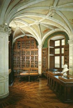 Beautiful structural arches in the Library at the Chateau du Lude in France, beauty and function ~ gorgeous!