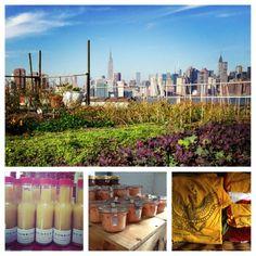2012 farm year ESRF
