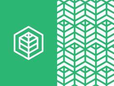 Leaf Logo designed by Design Partnership. Property Logo, Hexagon Logo, Agriculture Logo, Education Logo, Leaf Logo, Green Logo, Brand Guide, Medical Logo, Home Logo
