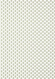 Anna French, Coordinating Fabrics, Go Green, Timeless Design, Beige, Wallpaper, Collection, Color, Flowers
