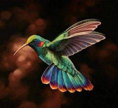 Colibrí levanta el vuelo