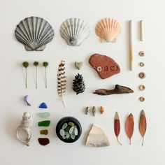 Our collected treasures from the last month. shells and sea glass from the Isle of Wight, a stripy feather, a ♥ shaped stone, beach pottery and brick, a fir cone and some Eucalyptus leaves (plenty o Collections Of Objects, Nature Collection, Nature Table, Flat Lay Photography, Nature Journal, Glass Art, Sea Glass, Sea Shells, Artsy