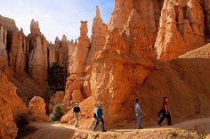 Hikers on Queen's Garden Trail, Bryce Canyon National Park, Utah