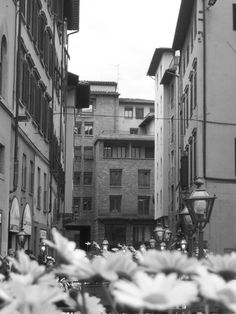 Florence Italy, through the lens of Danielle