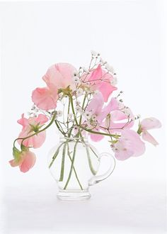 The stunning simplicity of sweetpeas and baby's breath.