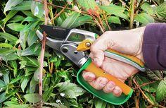 Cliquet Sécateur à enclume Ciseaux avec lame en acier SK5 japonais Chouette Arbre Ciseaux pour couper des secs et difficiles à schneidendem bois en 3 étapes. Avec garantie de satisfaction 21 jours.: Amazon.fr: Jardin