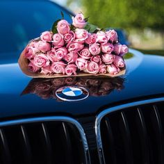 Roses vs BMW ??