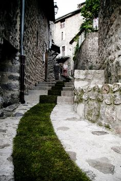 """French artist Gaëlle Villedary installed a nearly 1400 foot long grass carpet through the town of Jaujac, France for an installation entitled """"Tapis Rouge!"""" (""""Red Carpet"""")."""