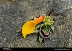 lovely-boutonniere
