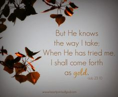 Job 23:10 - But he knoweth the way that I take: when he hath tried me, I shall come forth as gold.