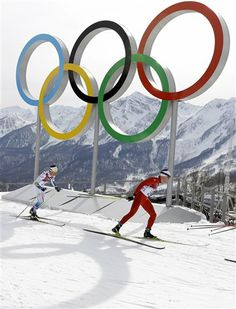 2014 Winter Olympic Multi-Medalists   http://globenews.co.nz/?p=9537