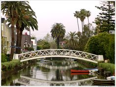 Venice Canal - California  Near Venice Beach you will go over little bridges that over look a few canals.. When you look down the canals, this is the type of beautiful you will see..