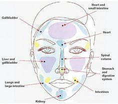 Associated Causes of Acne per Facial Zone