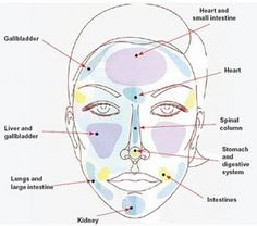 Associated Causes of Acne per Facial Zone